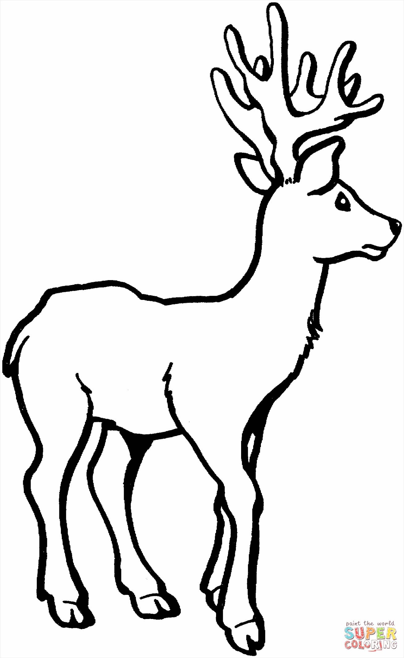 deer 7 coloring page uuaiu