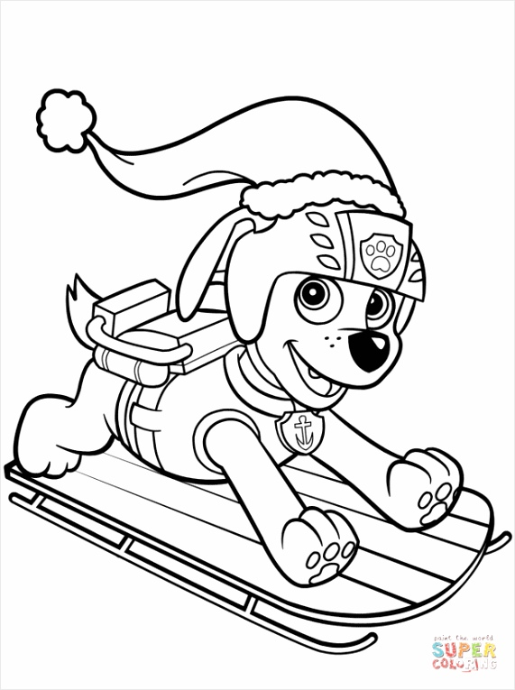 zuma on sled coloring page yrray
