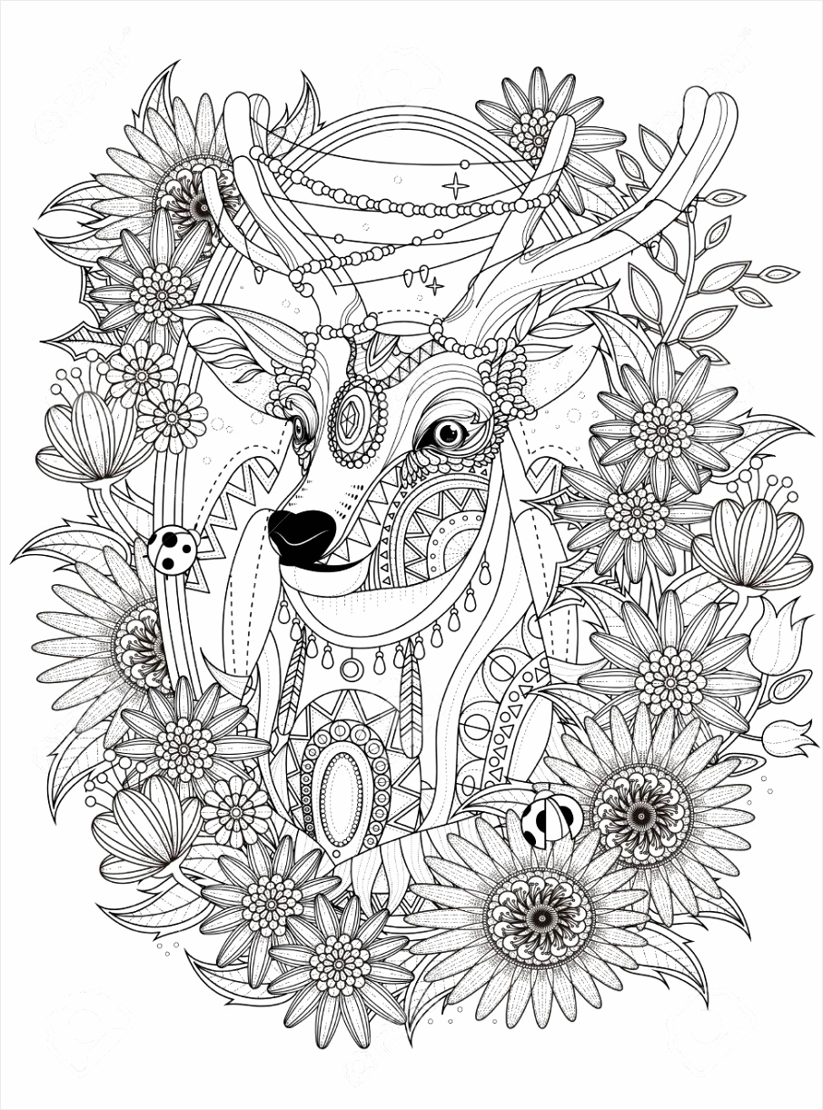 photo stock vector gorgeous deer with floral wreath adult coloring page riiee