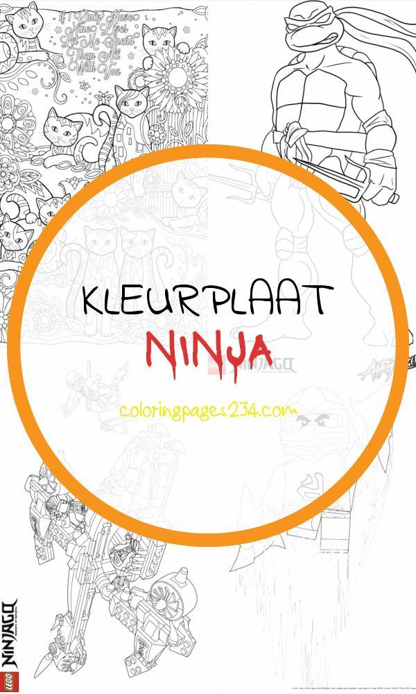 Free Ninja Turtle Coloring Pages Download Free Clip Art kleurplaat ninja, source:clipart-library.com