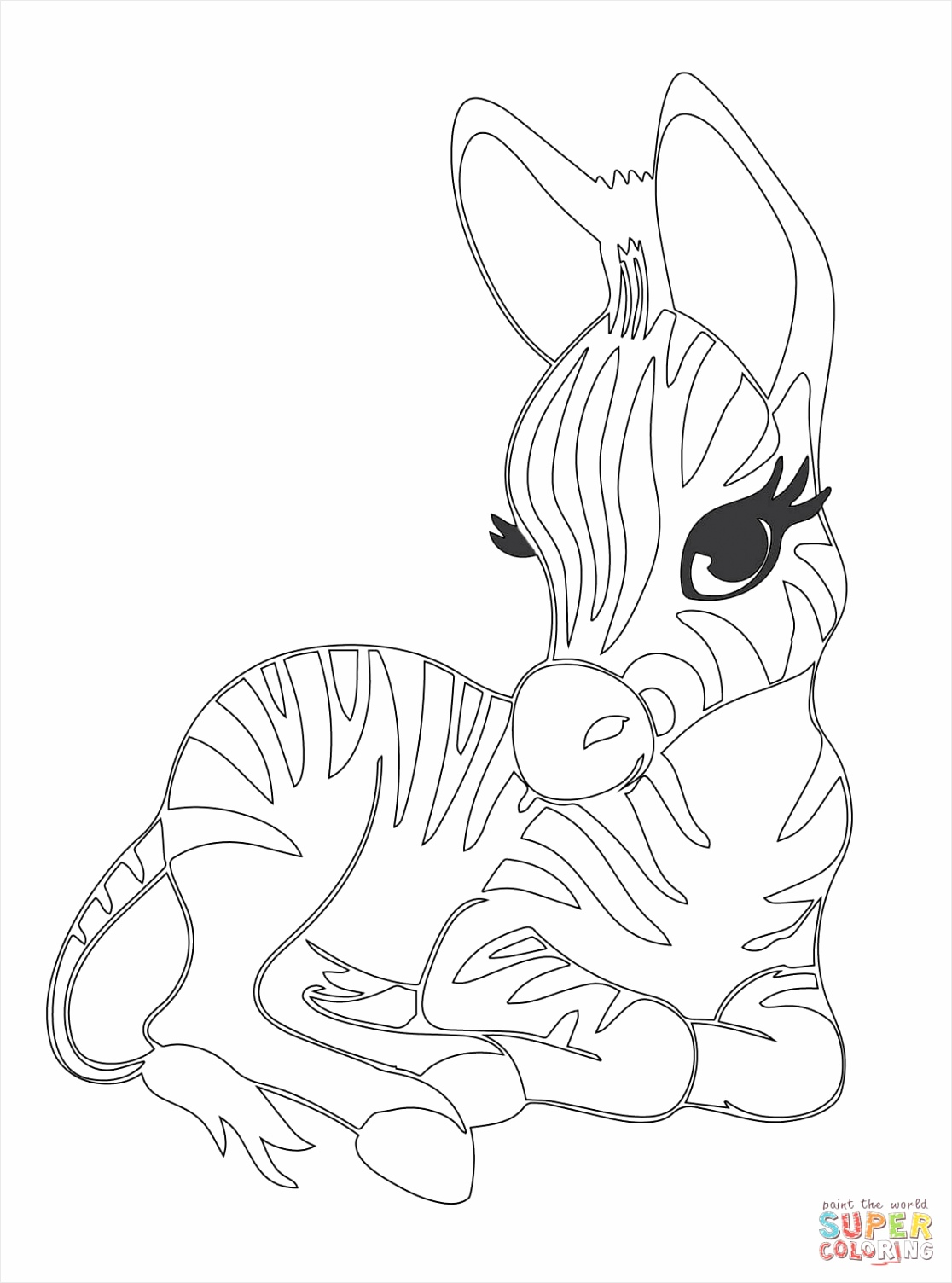 cute baby zebra coloring page uiuuy