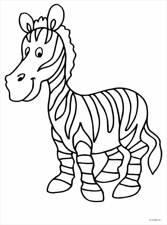 zebra kleurplaat kleurplaten234