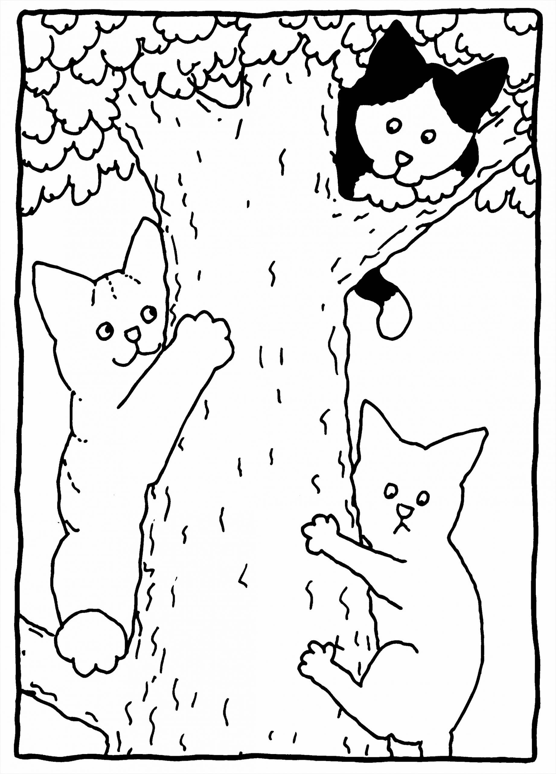 kleurplaat boom winter kleurplaten234