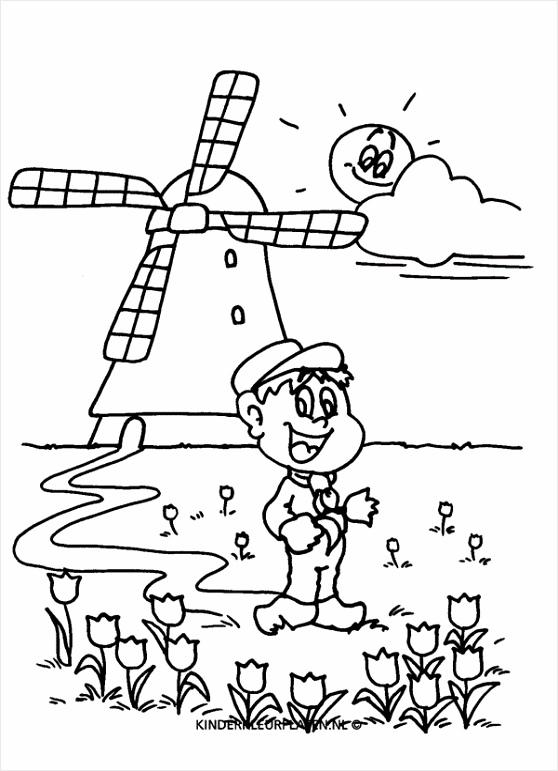 molen molenaar tulpen 99f2d2d8 2295 4f5c ba5b cb02bde ooitt