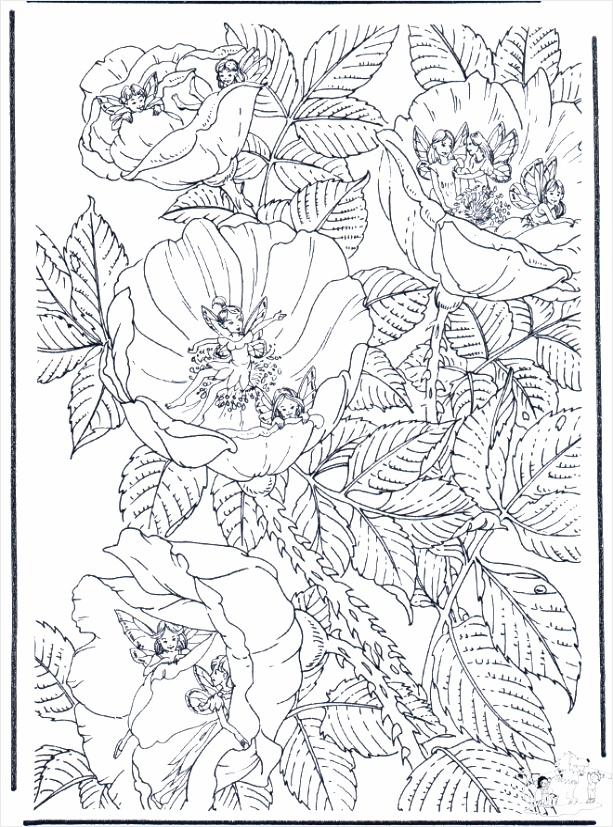 elfjes in bloemen b2443 retup
