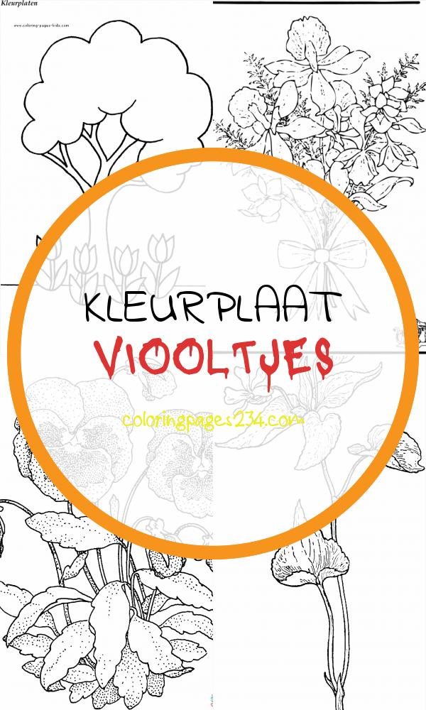 Wereldreis naar plantenland PDF Free Download kleurplaat viooltjes, source:docplayer.nl