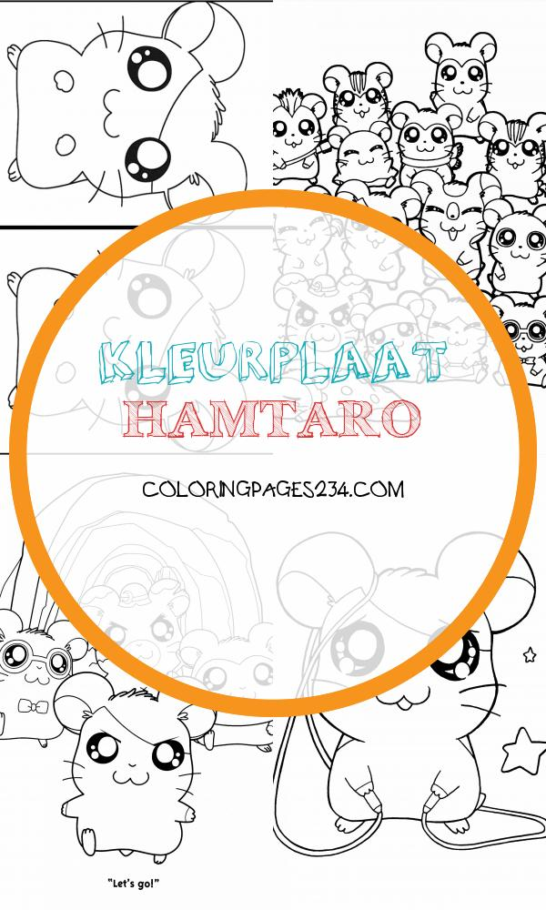 Hamtaro Zoek de verschillen spelletjes18 kleurplaat hamtaro, source:activiteiten.websincloud.com