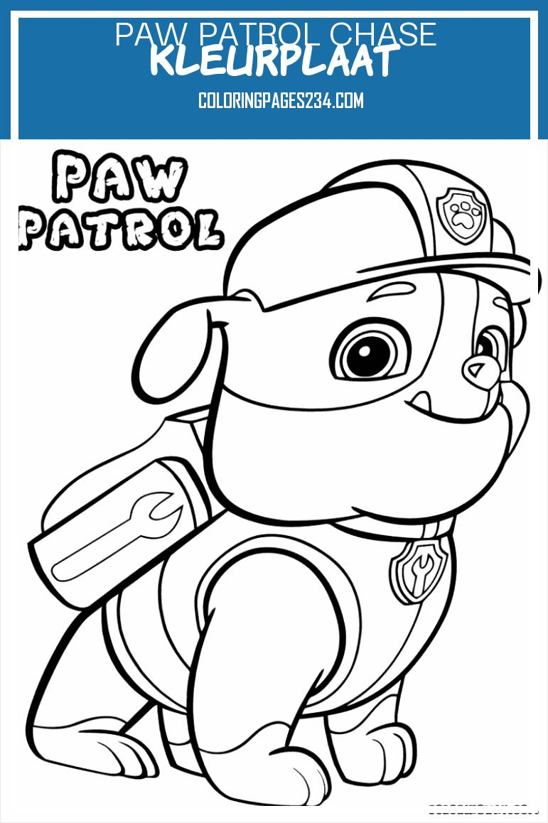 Vbxoqu 55550 Srl1bozywkscjuwnn Paw Patrol Chase Kleurplaat Chase Paw Patrol Coloring Page Printable Free Printable Paw 962771