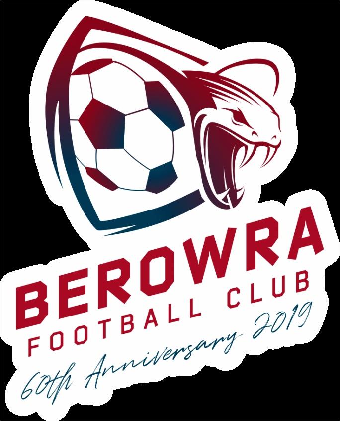 berowrafc logo fin rgb color puoet