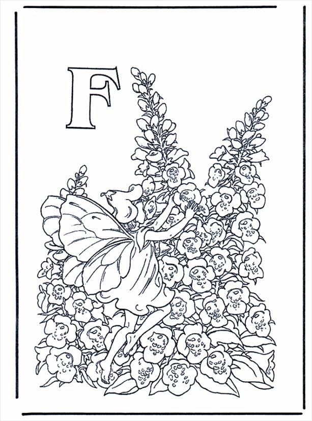 alfabet f b340 pouwa