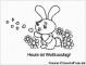 10 Ausmalbilder Erwachsene Kaninchen
