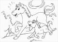 8 Ausmalbilder Pferde Pdf
