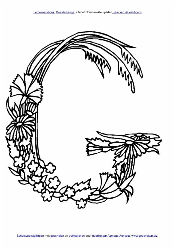 doe de kanga lente werkboek met lente werkbladen van basisschool goochelaar aarnoud agricola 66 638 roiwt