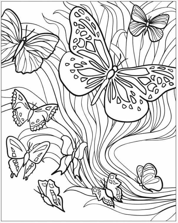 volwassenen kleurplaat vlinders tooit