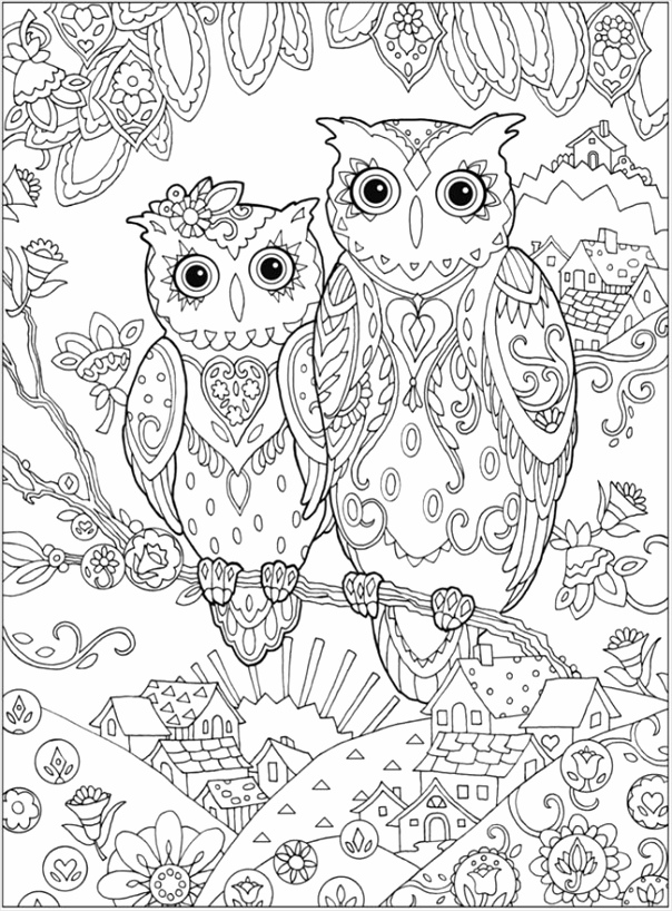 printable coloring pages for adults 15 free designs owl 2 ttwoa