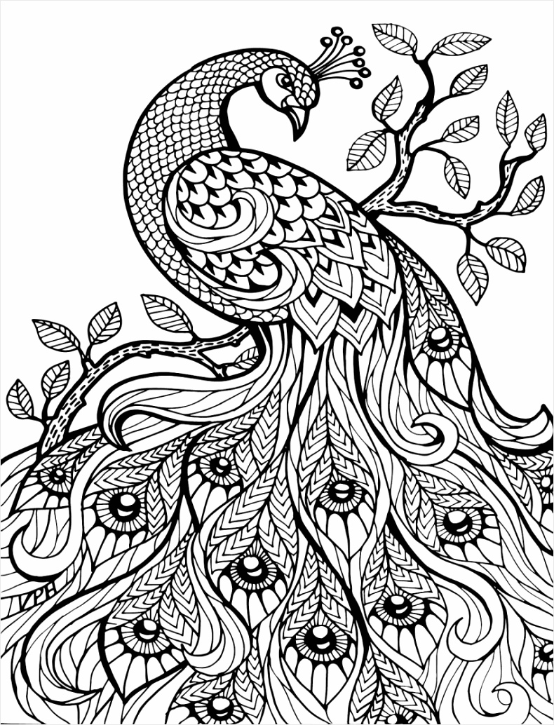 coloring book free printable books for kids picture inspirations adult pages best eraru