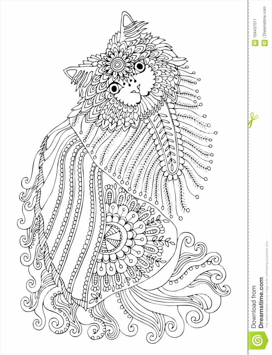 hand drawn kitten sketch anti stress coloring page adult book zen tangle style vector illustration white background ettwy