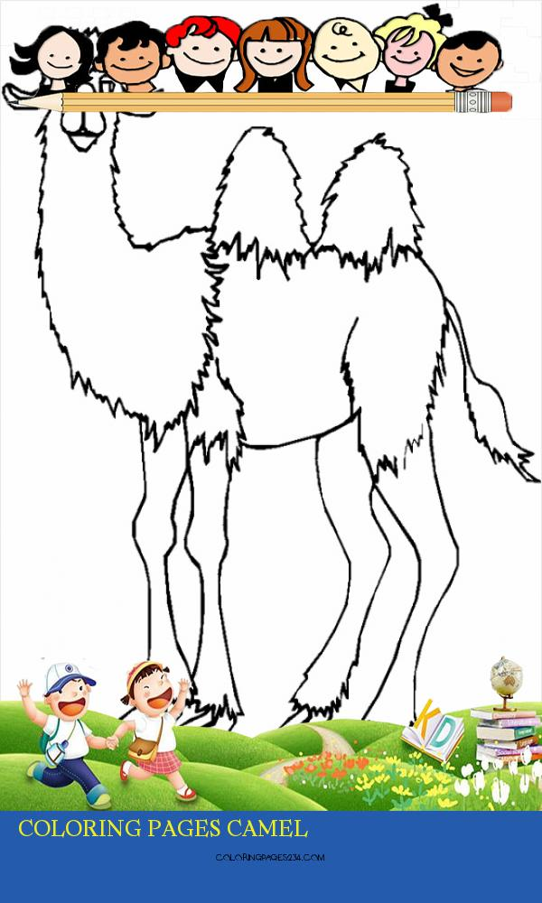 🎨 Camel 10 Kizi Free 2020 Printable Coloring Pages For Coloring Pages Camel, source:kizicolor.com