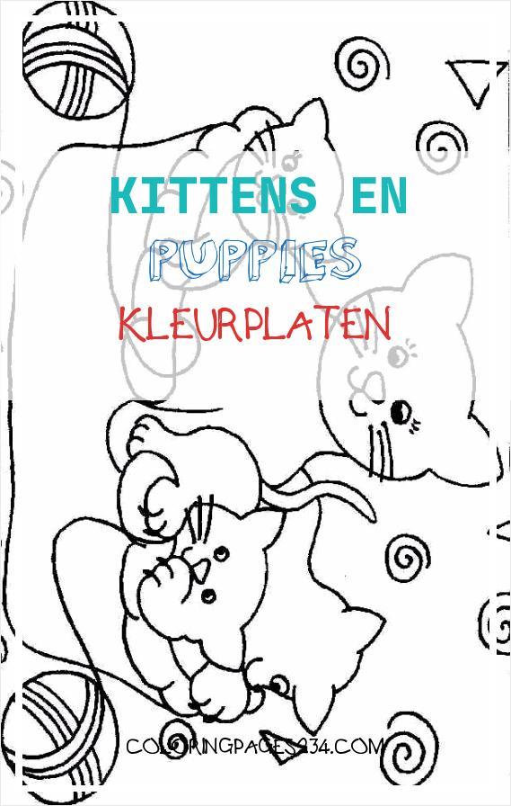 kittens en puppies kleurplaten kleurplaten234