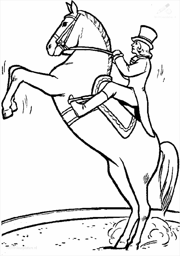 kleurplaat paard 14 wpitr