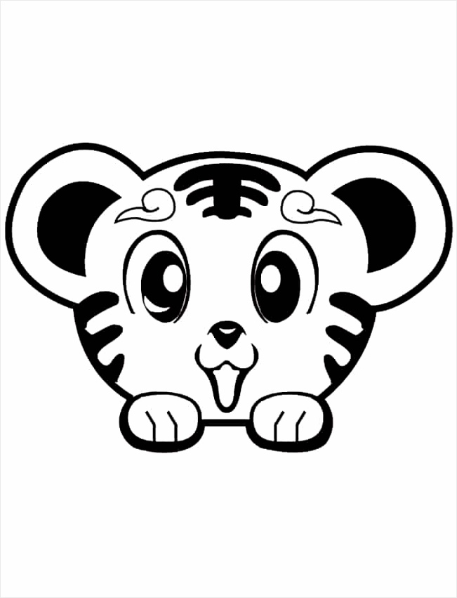 Cute Baby Tiger Coloring Pages arypy