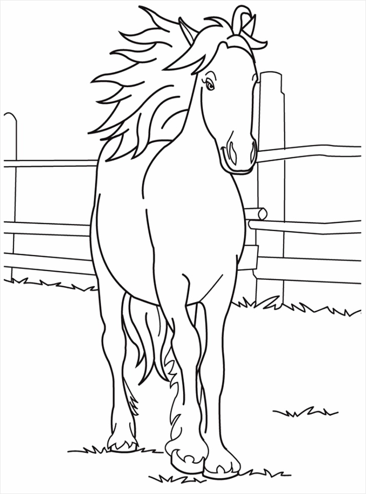 coloring book horse color pictures for preschool pages excelent preschoolers uauia
