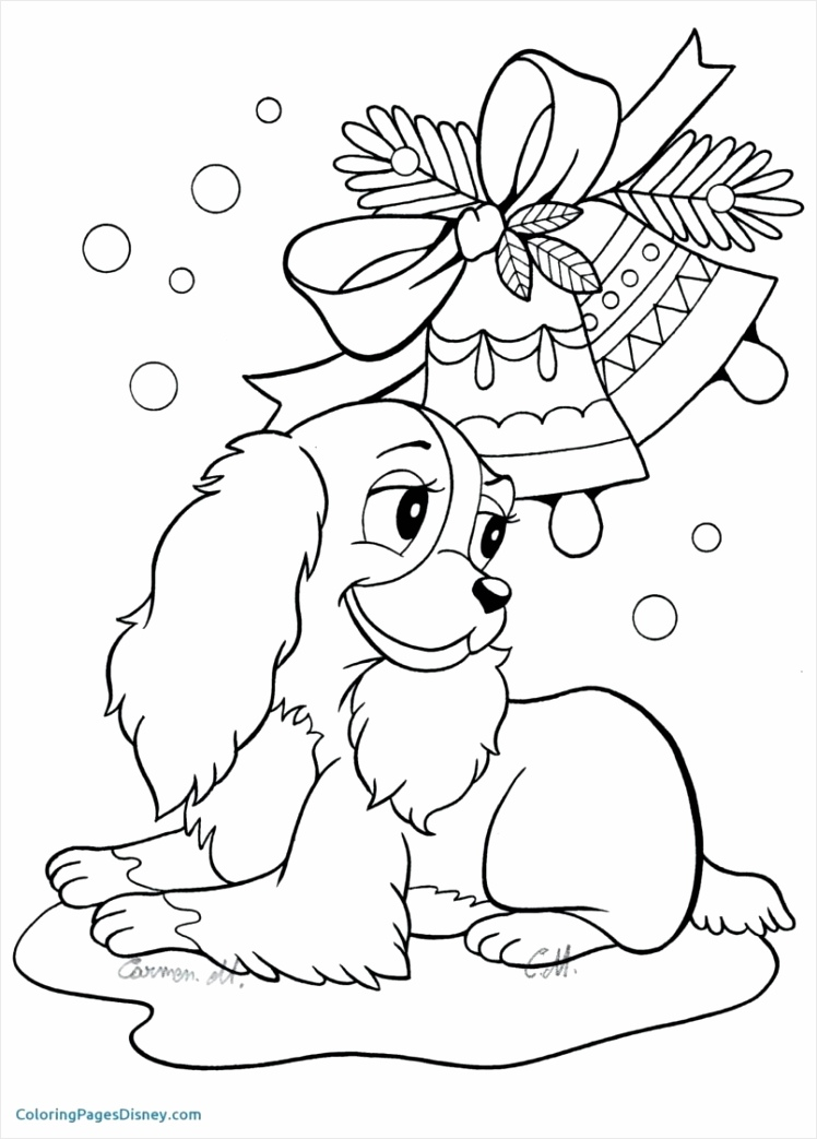 cartoonrm animals coloring pages baby printable book for preschoolers ivpir