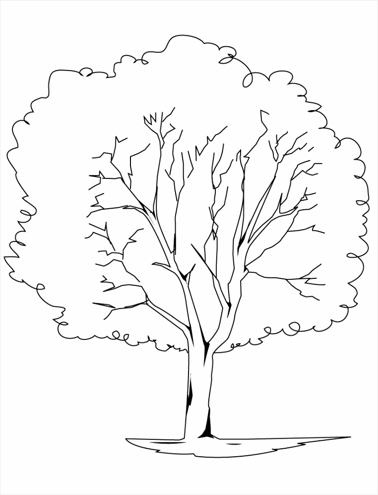 Tree Coloring Page eaitr