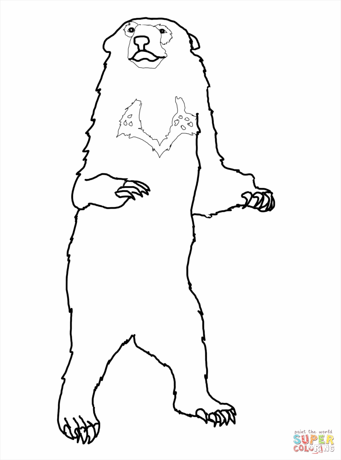 honey bear coloring page woies