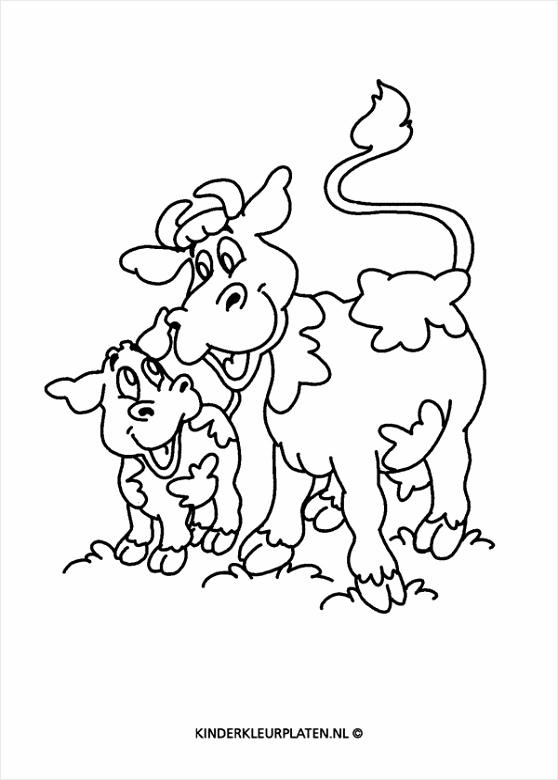 kinder kleurplaten dieren uitprinten kleurplaten234