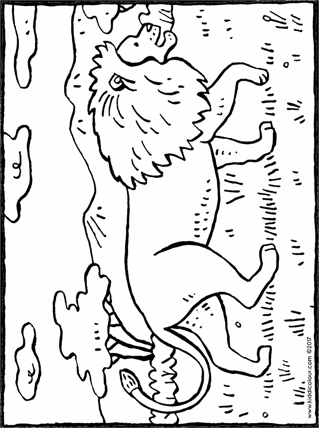 kleurplaat neushoorn kleurplaten234