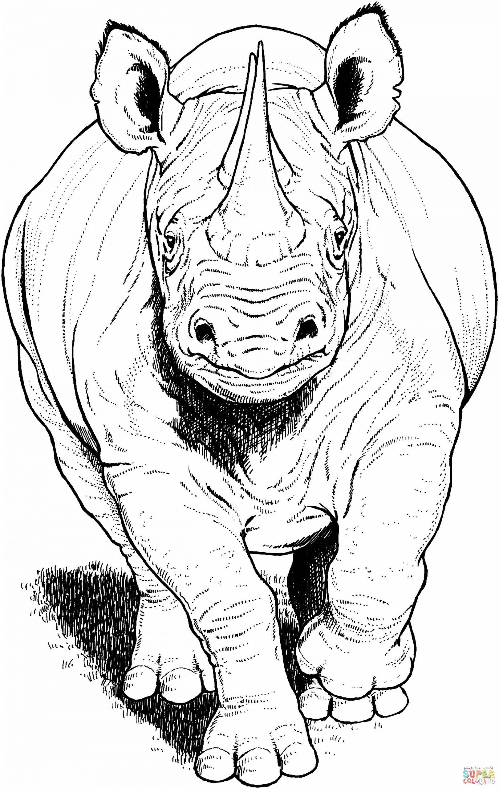 black rhino running coloring page uiuiy