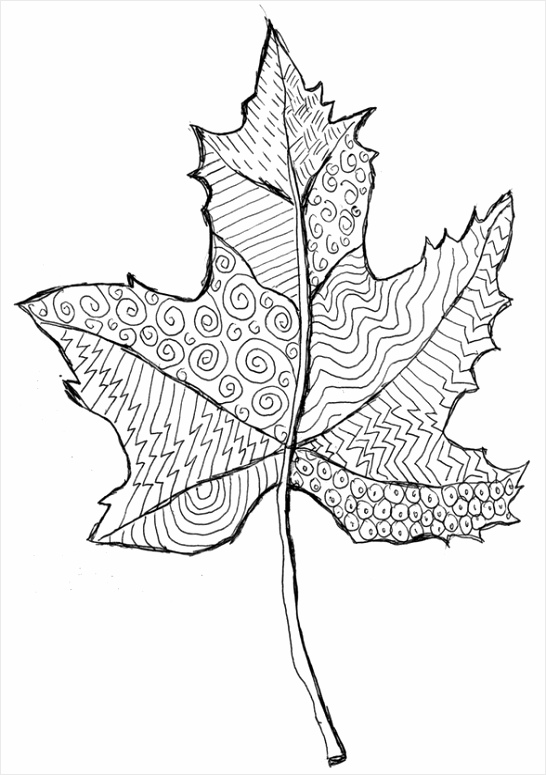 color v3 lang=nl&theme id=419&theme=Herfst&image=coloriage adulte automne g 11 azira