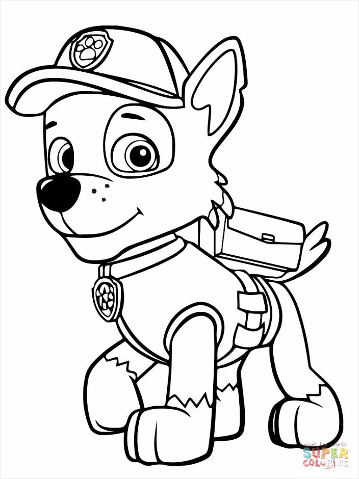 paw patrol rocky coloring page tutpp