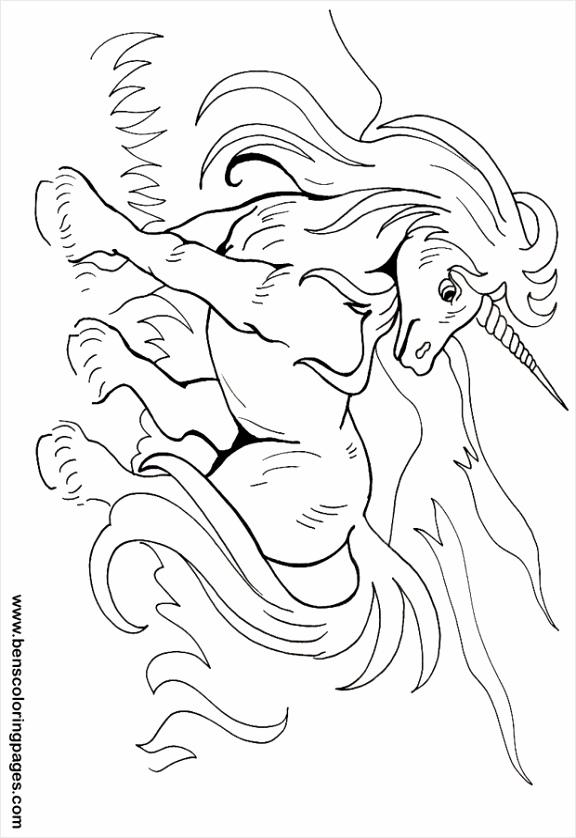 kleurplaat eenhoorn pegasus kleurplaten234