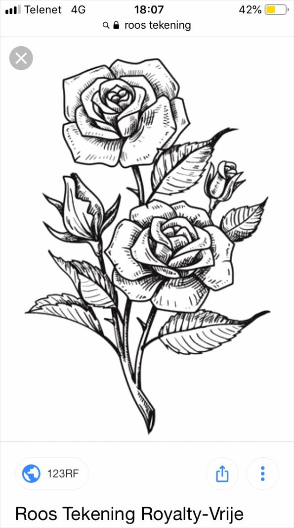 kleurplaten volwassenen rozen kleurplaten234