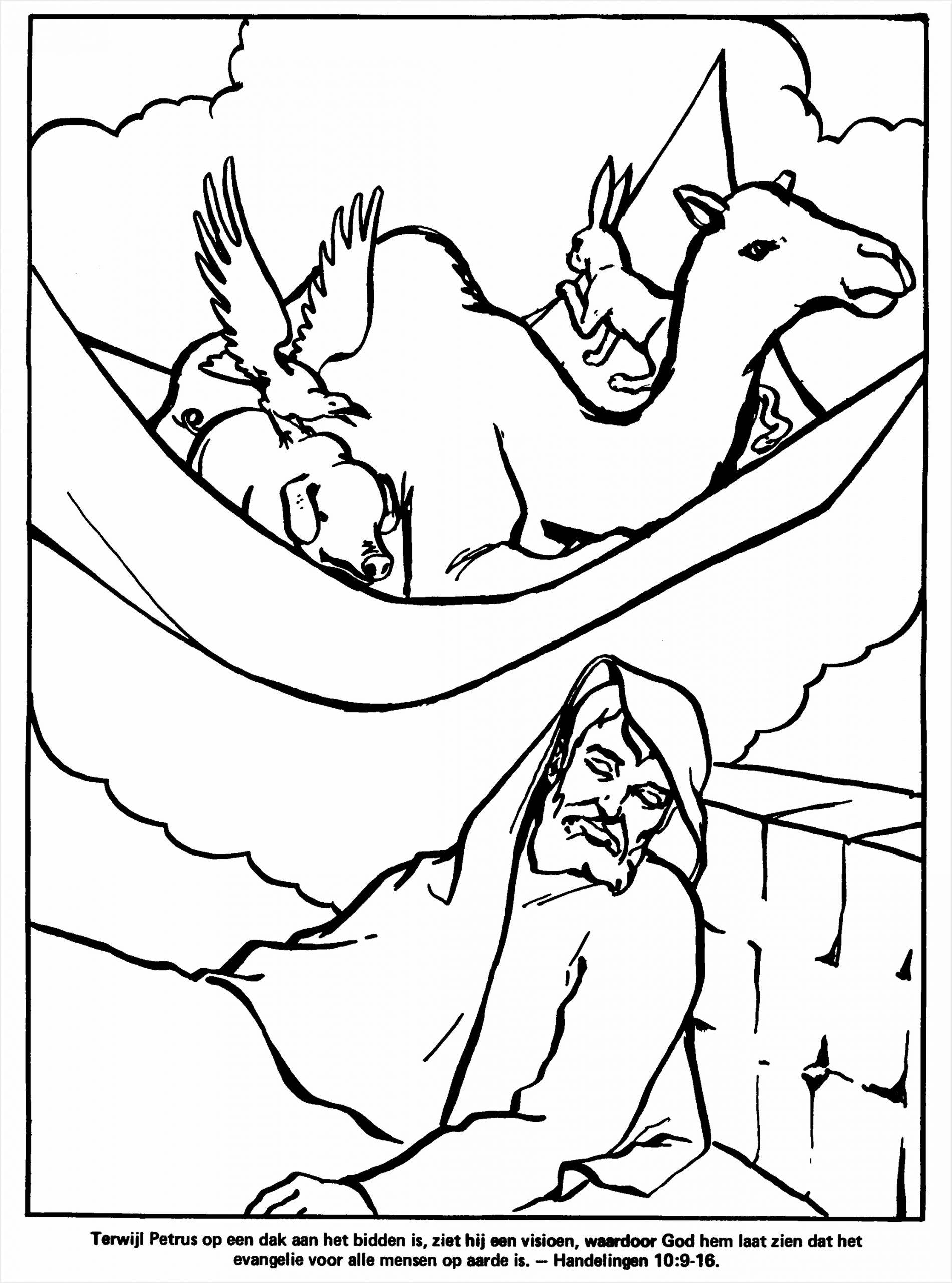 kleurplaat book=bijbel 01&image=bijbel 01 16 &oms=Terwijl Petrus op een dak aan het bidden is ziet hij een visioen waardoor God hem laat zien dat het evangelie voor alle mensen op aarde is Handelingen wxoew