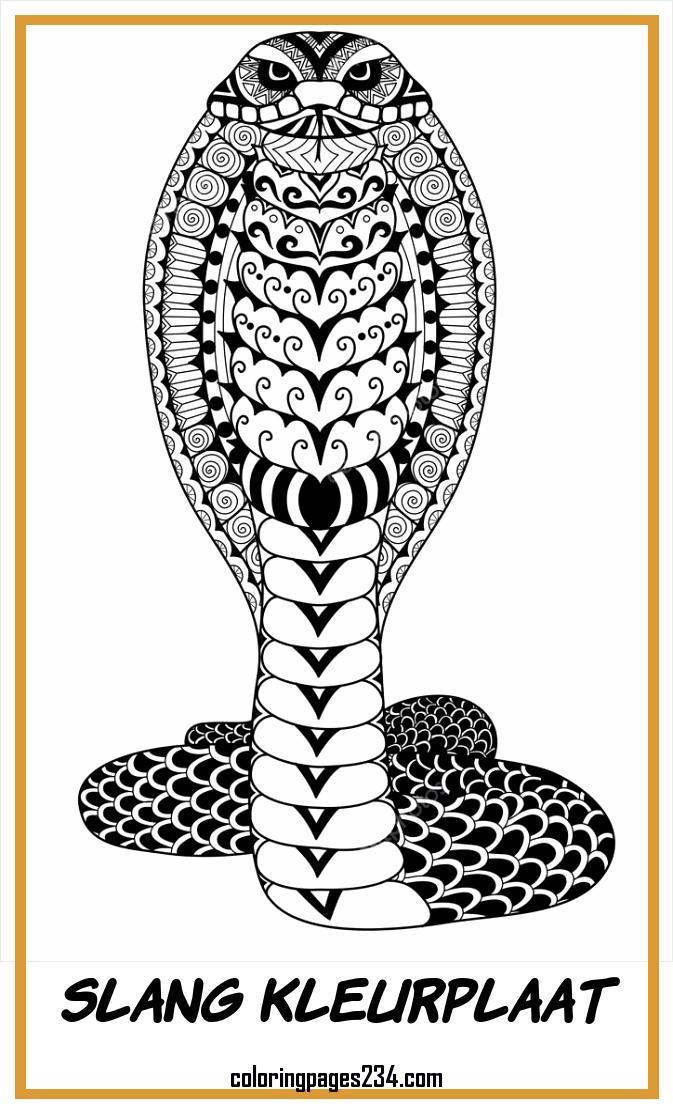Clean lines doodle design of Cobra snake for adult coloring slang kleurplaat, source:depositphotos.com