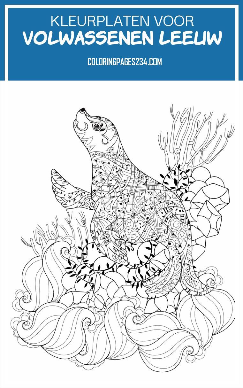 Infedw 45147 S1q8stahgfswpfeve Kleurplaten Voor Volwassenen Leeuw Hand Rokken Doodle Overzicht Zeeleeuw — Stock Vector 962761