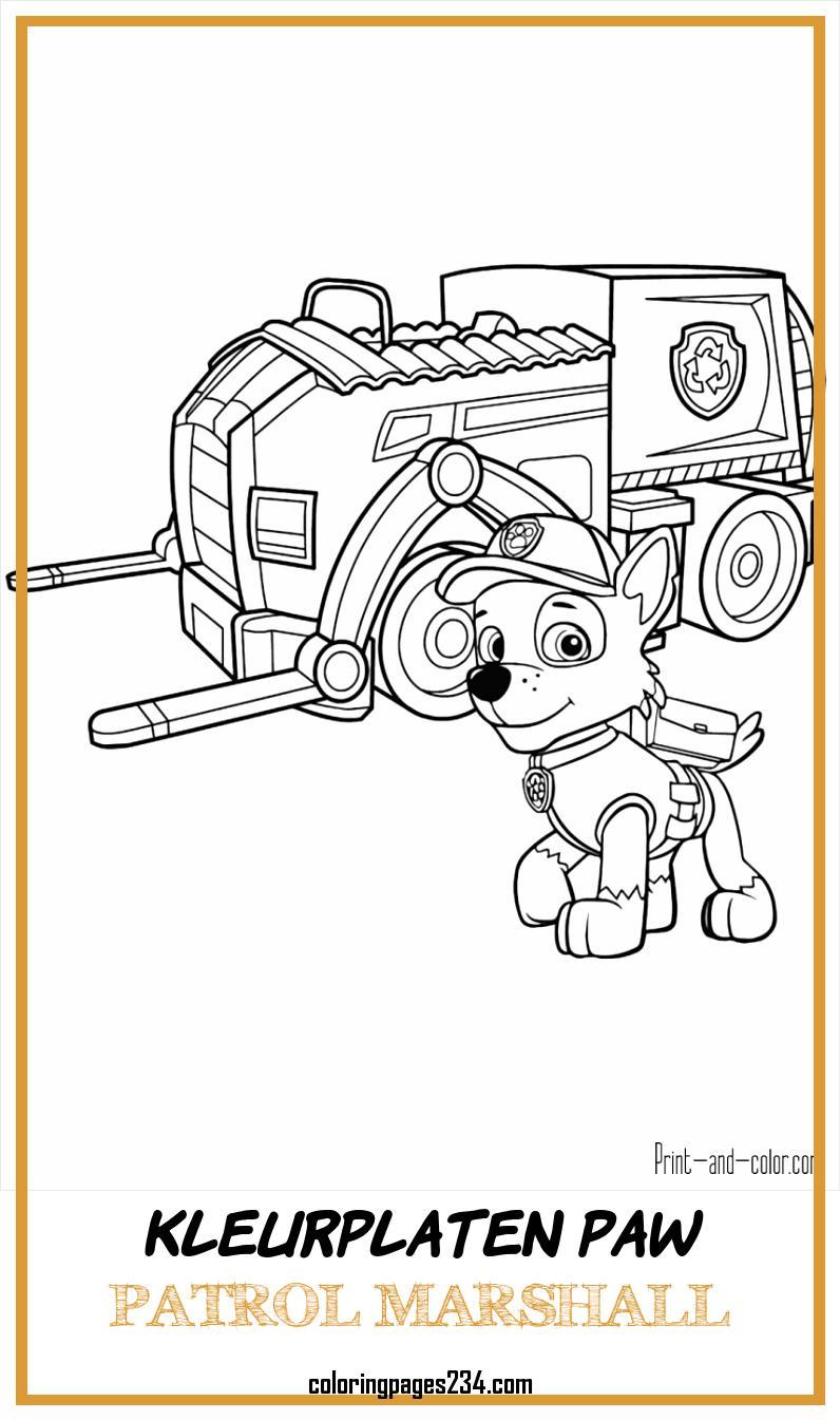 chelsea embleem coloringpages234