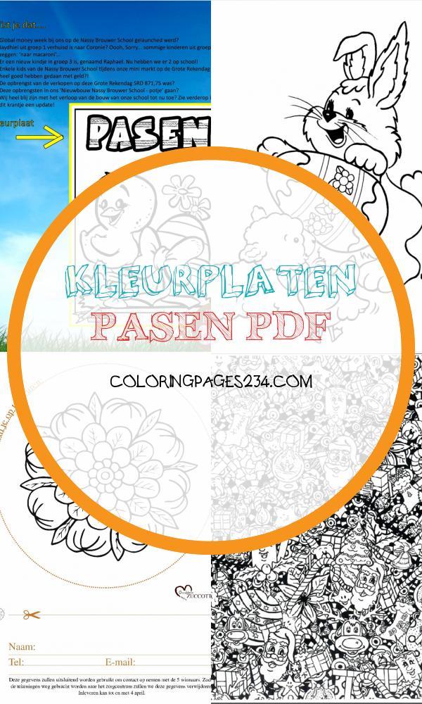 Kleurplaten Van Knuffels - ColoringPages234