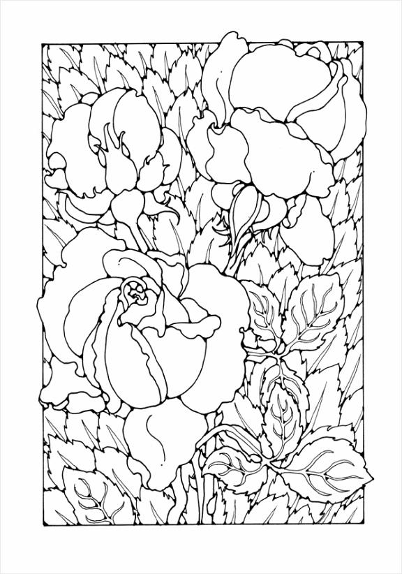 kleurplaat rozen dl uwpte