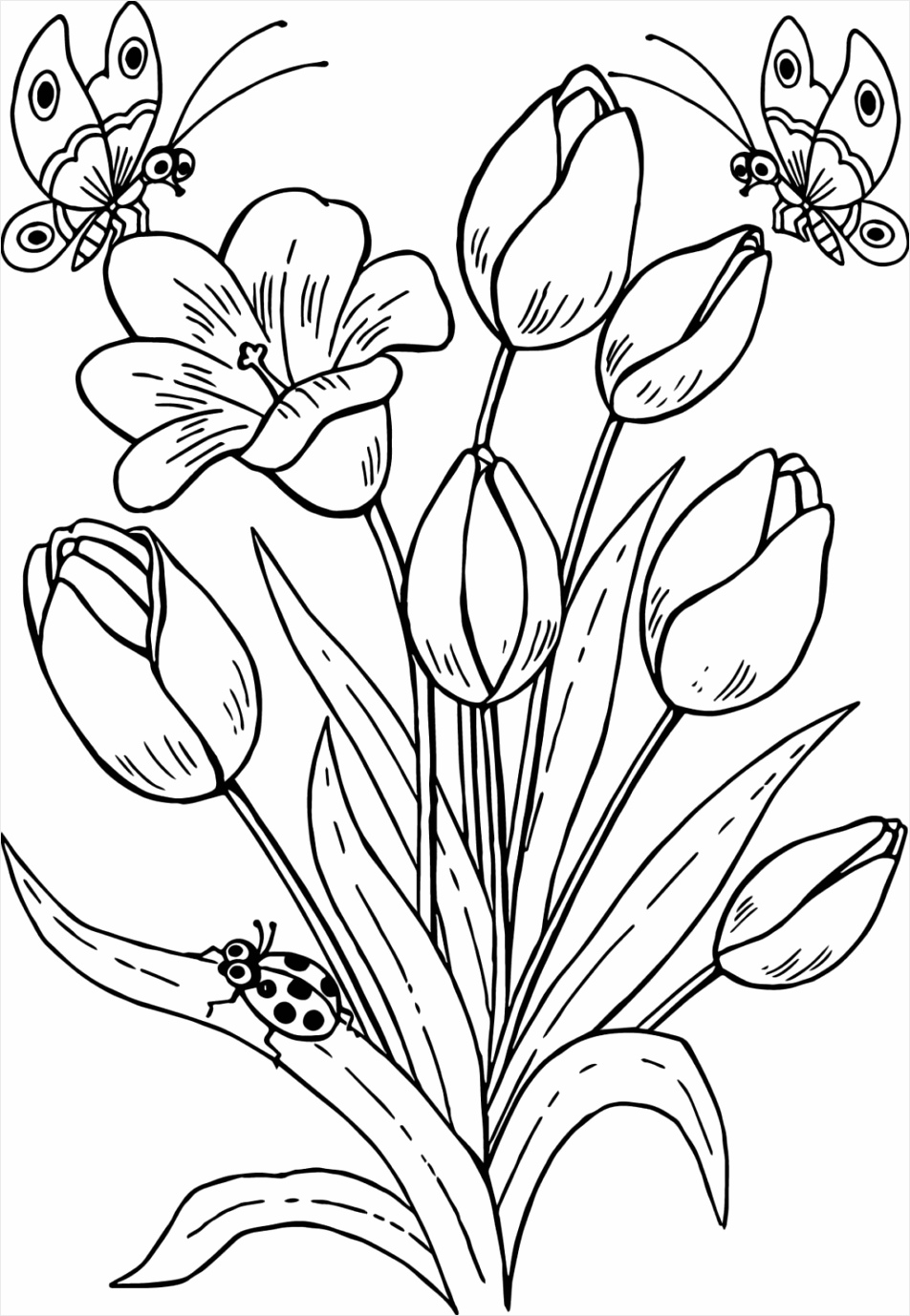 coloring pages cool drawing butterfly flowers tulips tulipes and tures color printable for adults roses activity sheets free print colouring template caterpillar of 1024x1467 uotry