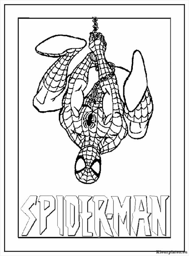 spiderman kleurplaat ryioy