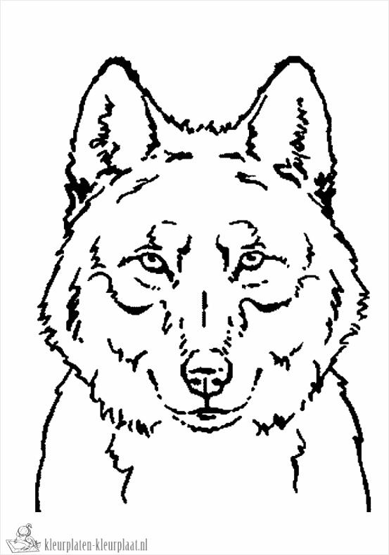 wolf kleurplaat propi