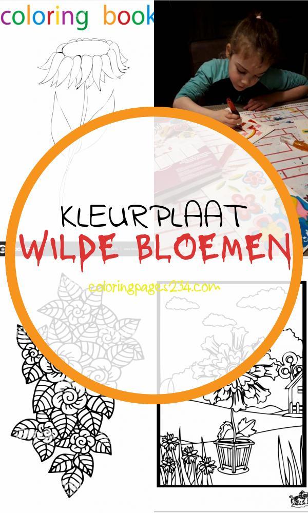 Boeket bloemen kleurplaat kleurplaat wilde bloemen, source:supercoloring.com