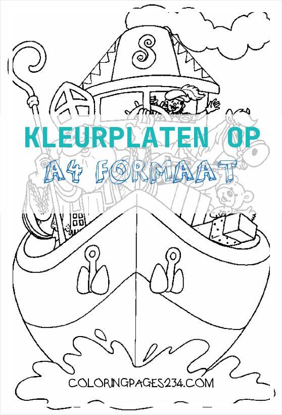 Sinterklaas kleurplaten kleurplaten op a4 formaat, source:sinterklaas.linkietheo.nl