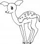8+ Deer Coloring Pages